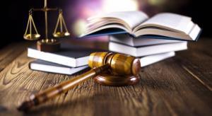 Оказание услуг в суде